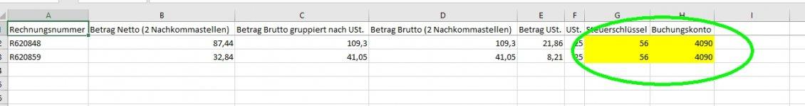 Steuerschlüssel Excel.jpg